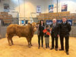 From left, Adele Irvine and brother Rhudi with her champion Charolais cross bullock which sold for £1,390, pictured with Harold Murray presenting the Harold Murray cup and judge Gary Raeburn