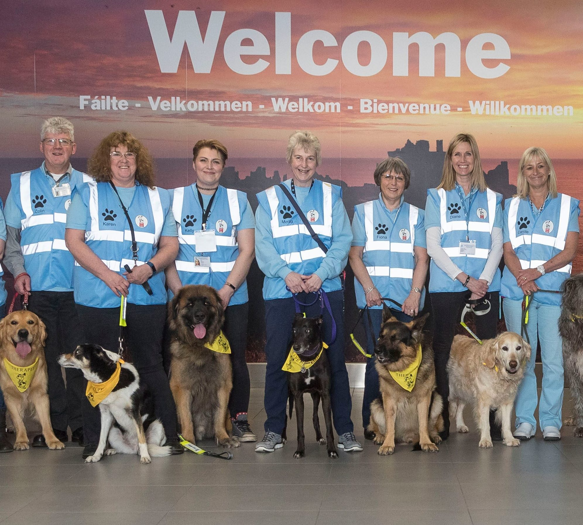 Easily identifiable in their high-vis jackets and bandanas, the dogs will mingle with passengers and staff throughout the terminal.
