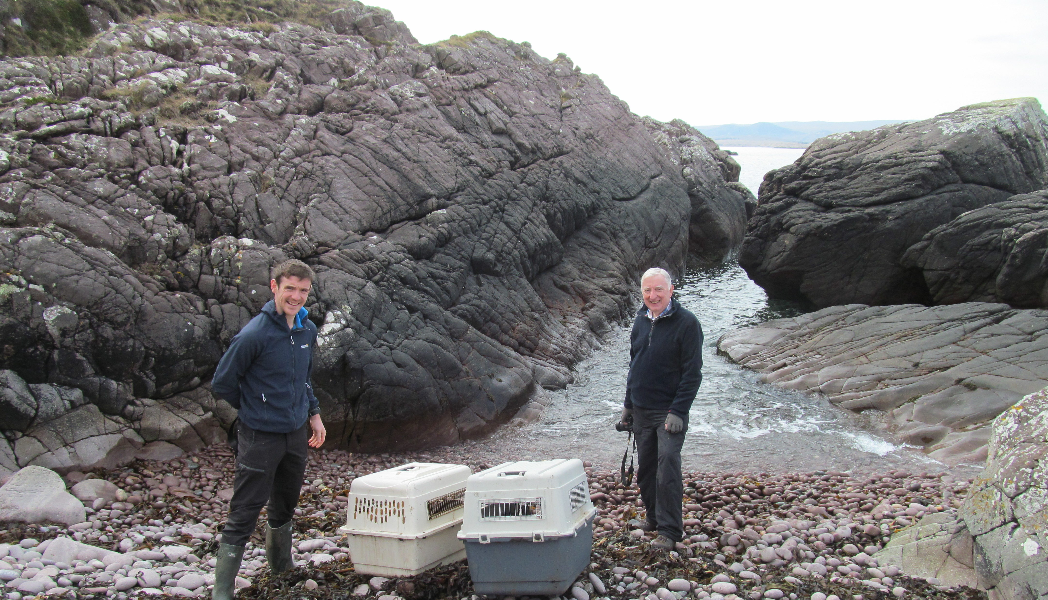 Ben and Paul Yoxon with Aeris and Beatha prior to their release near Aultbea