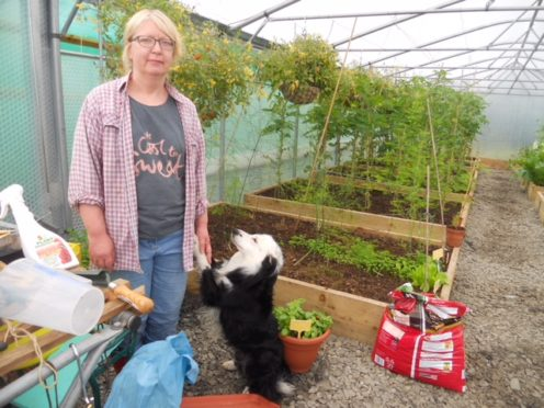 """Scottish Crofting Federation chairwoman Yvonne White has hit out at the councillors for their """"betrayal"""" of the Highlands crofting culture and future"""