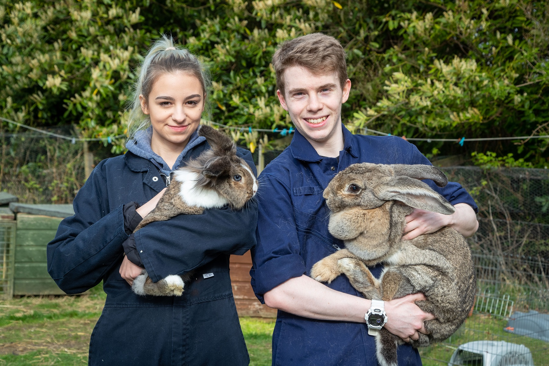 SRUC students care for a wide variety of animals.