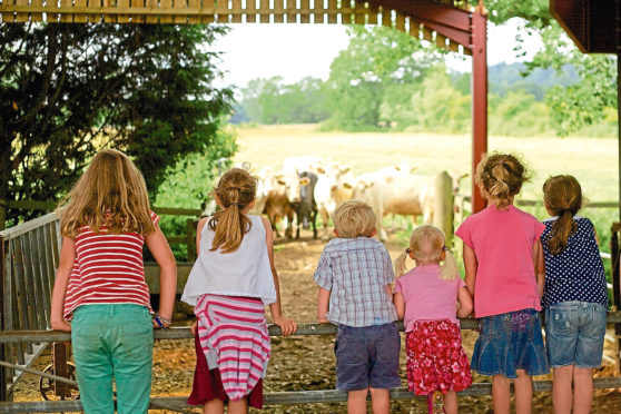 Open Farm Sunday takes place on June 9