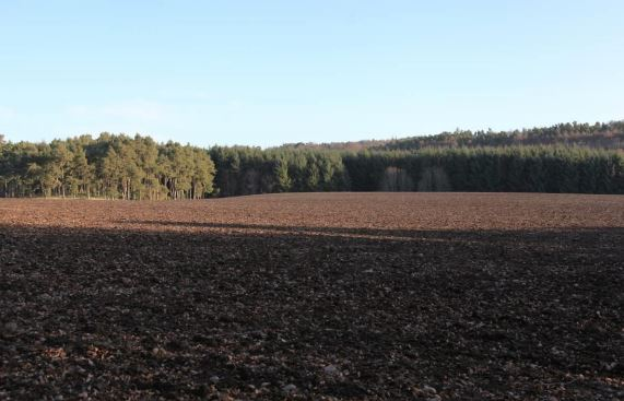 The field where the extended quarry could be built