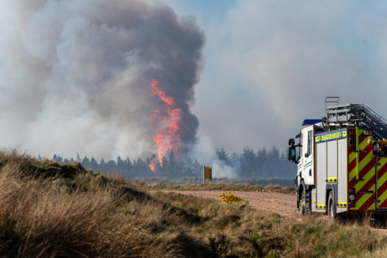 Wildfire at Dunphail, Moray.
