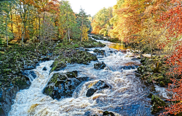 The Falls of Feugh.