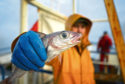 Scottish trawlermen on board the trawler
