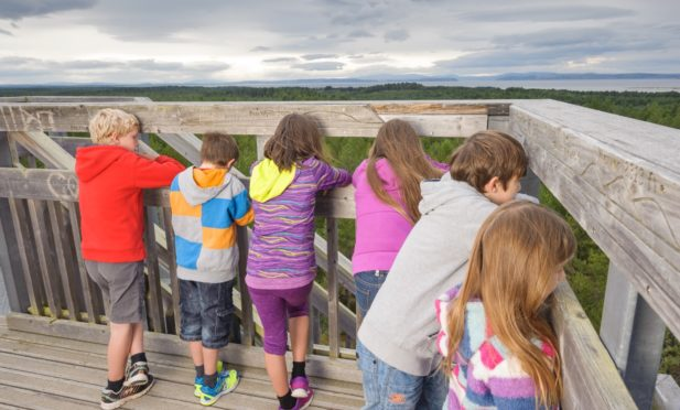 Kids enjoying the wonderful views over Culbin Forest