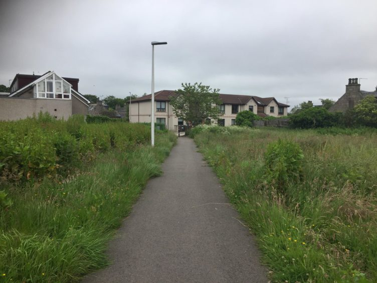 Overgrown grass in the Dyce area