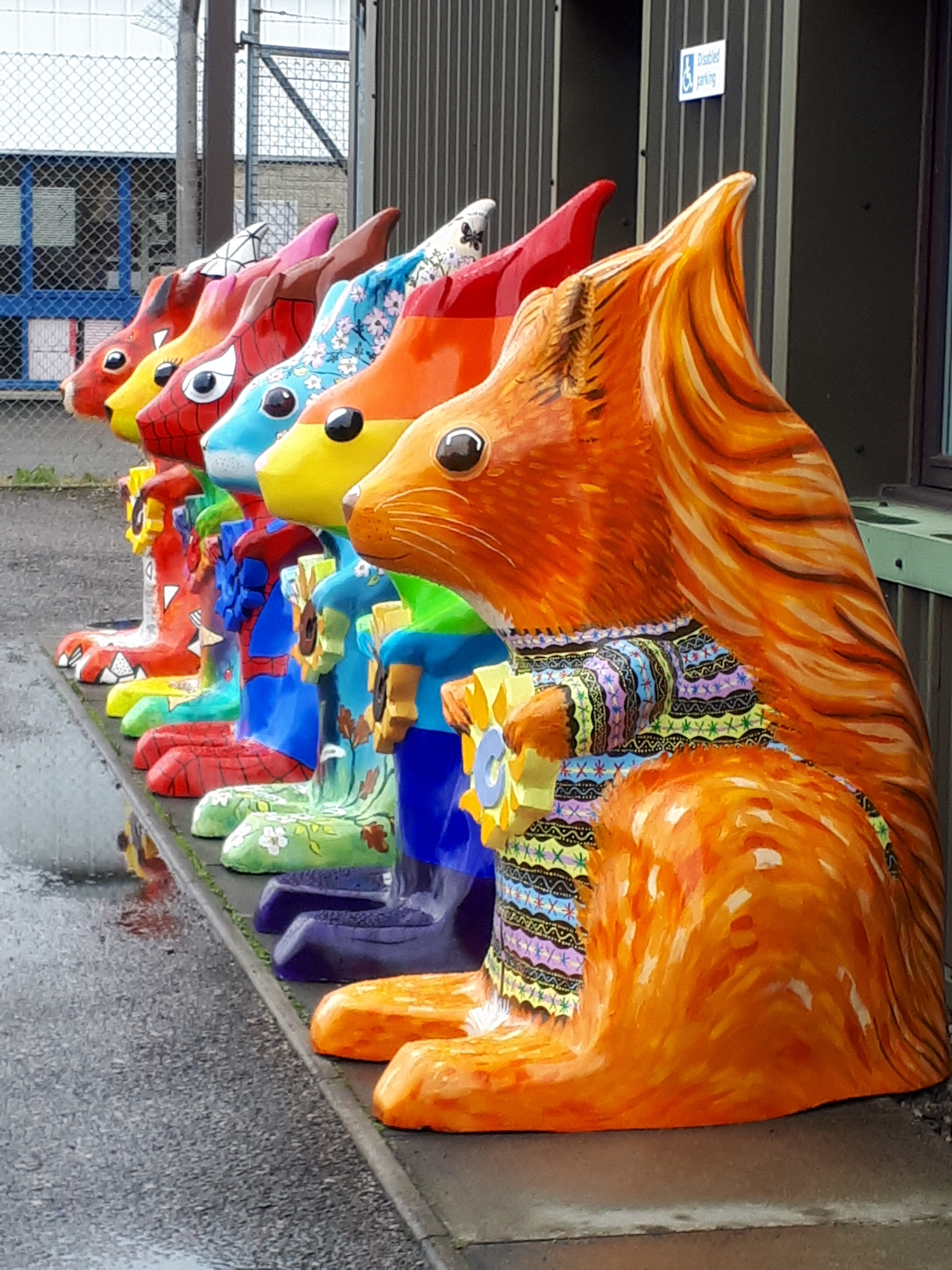 Five-foot tall squirrels have been distributed to locations around the Highlands as part of Highland Hospices Go Nuts art trail.