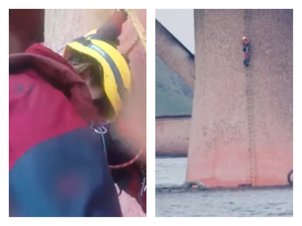 Screengrabs from video by Greenpeace