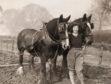 DRA499 Land Girls WWII