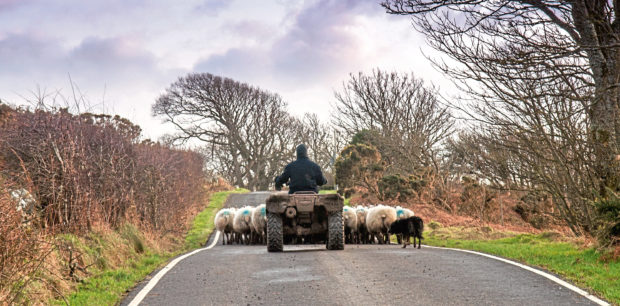 Three of the five UK farm deaths related to ATVs were in Scotland.