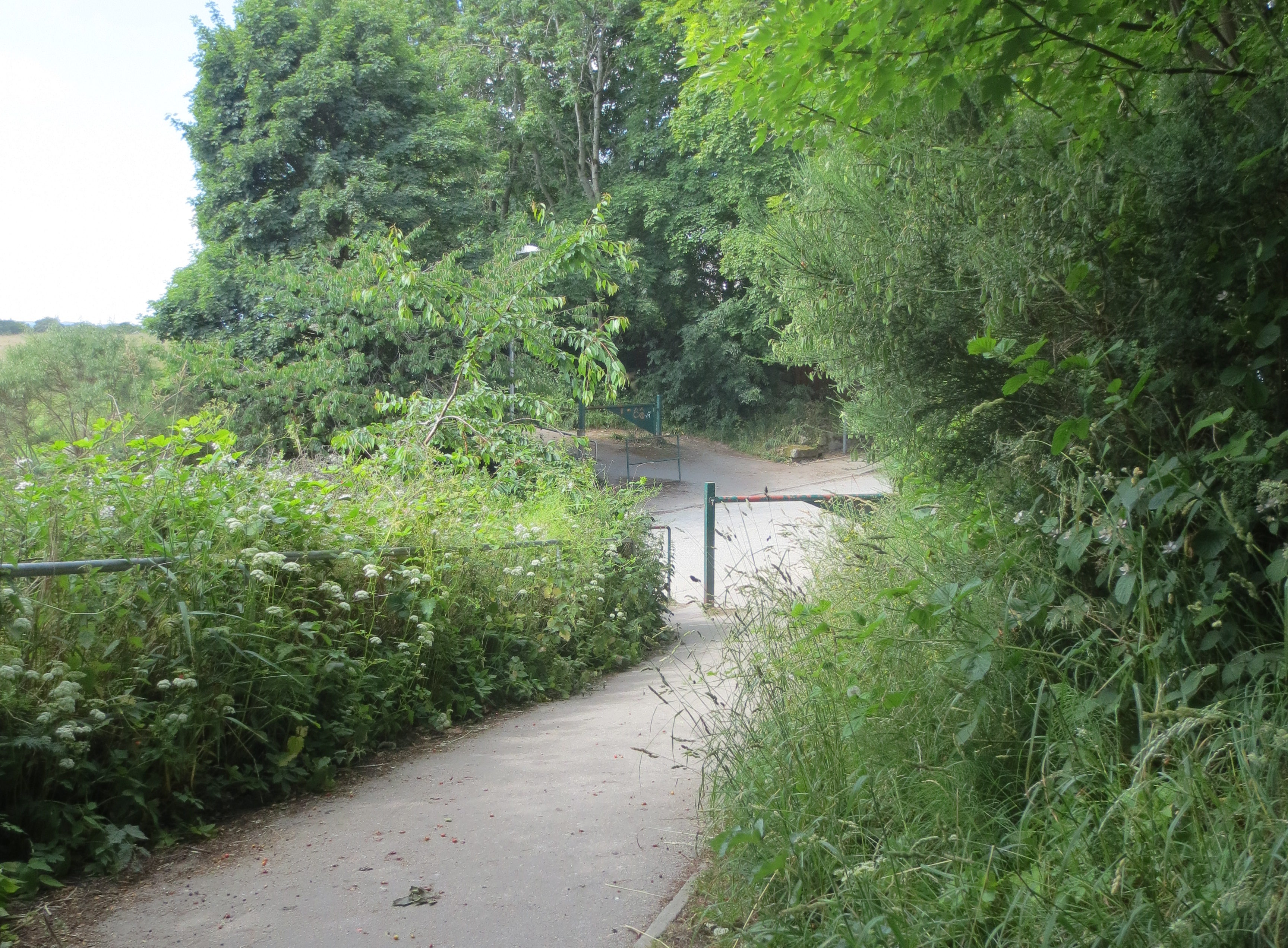 Councillors are looking at ways to improve this section of The Deeside Way.