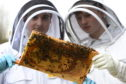 Martin Leahy and fellow young beekeeper Sean Dinnie