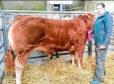 Caithness Young Farmer Laura Gunn.
