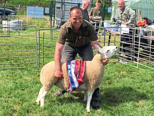 Neil Montgomery with his champion Cheviot gimmer.