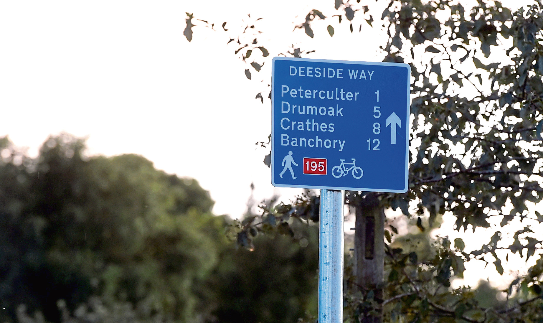 The Deeside Way is a popular walking and cycling route. Picture by Jim Irvine