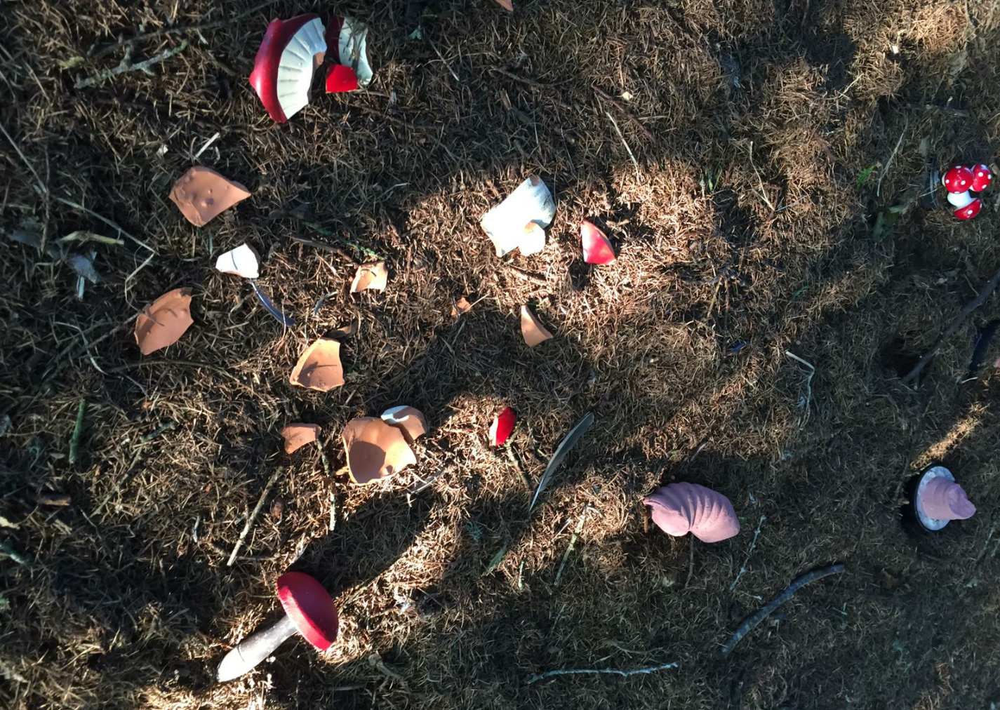 Vandals smashed apart the fairy woods