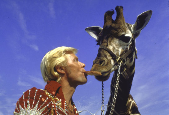 Animal trainer and circus headliner Gunther Gebel-Williams feeding trained giraffe.  (Photo by Ray Fisher/The LIFE Images Collection via Getty Images/Getty Images)