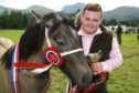 Craig MacKinnion of Kingussie with the champion horse at the Lochaber Agricultural Show