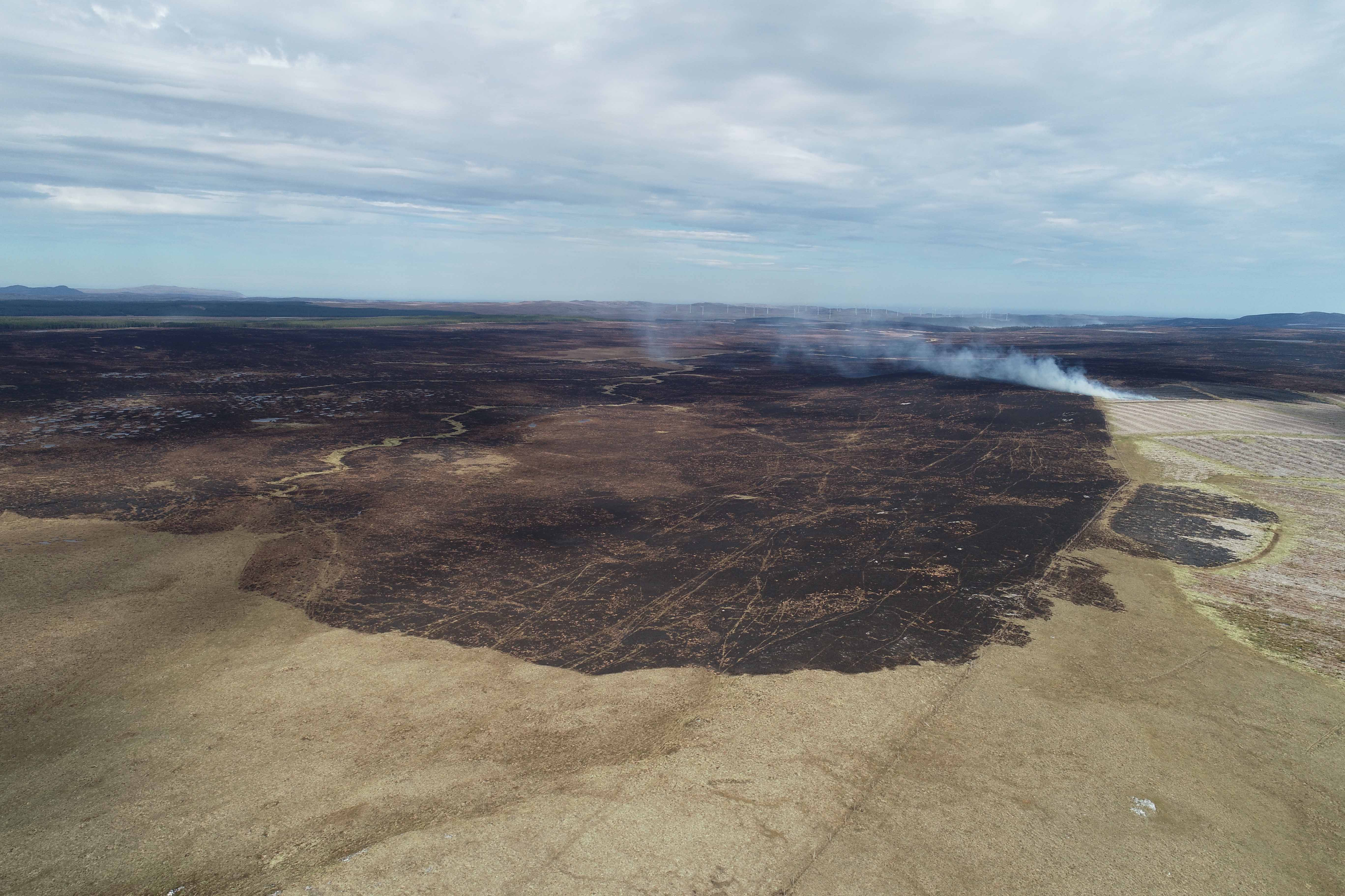 Peatland wildfire damage near Strathy. Credit Paul Turner.