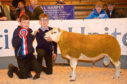 Harvey Stuart, 13, (right) with his brother  Jack Stuart, 10, (left) and the winning ram, a Texel shearling.