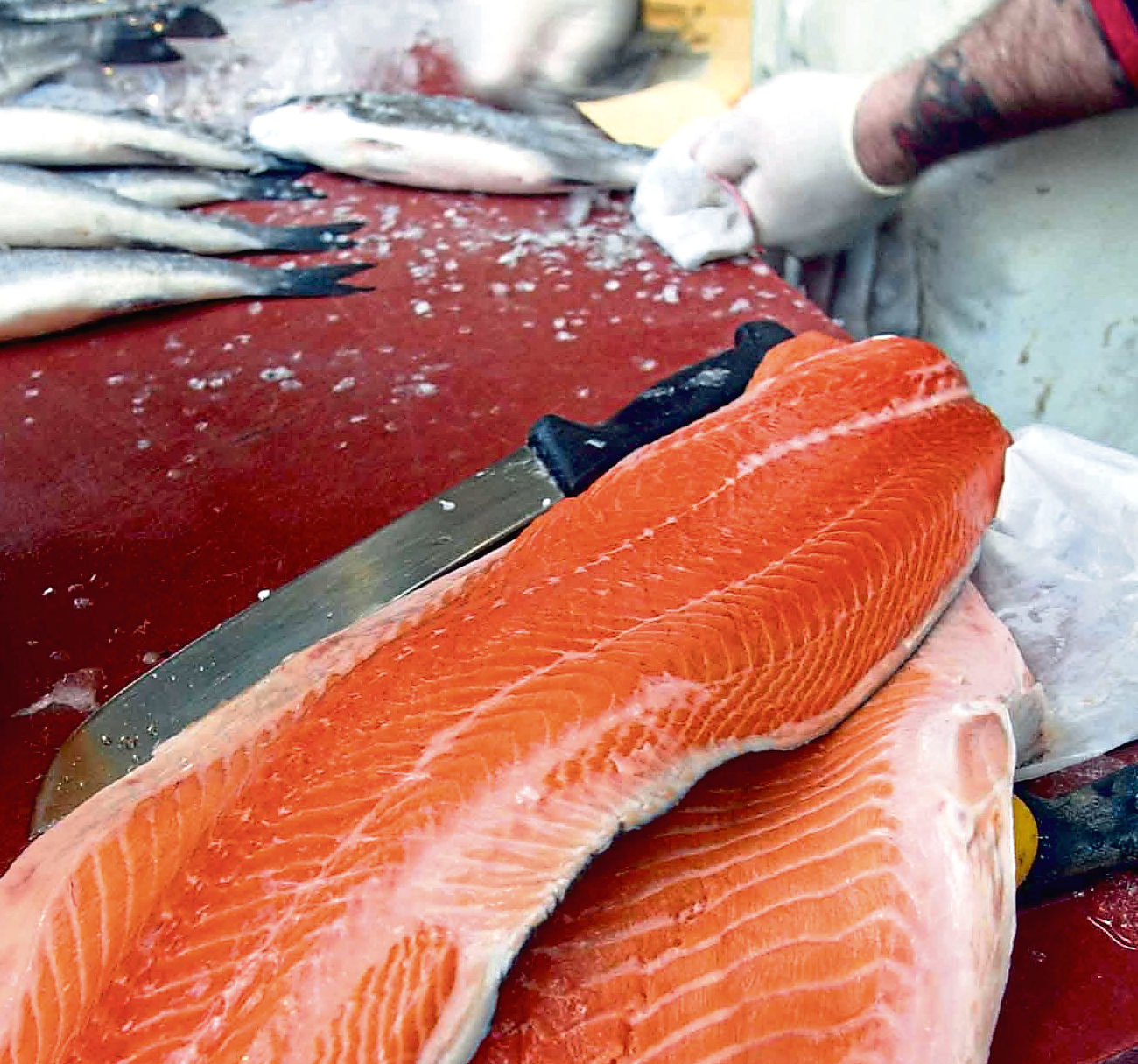 Salmon fillets on sale at a fish market.