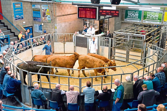 Commission rates are being cut across all stock sold at the co-operative's Thainstone and Caithness centres from January 1.