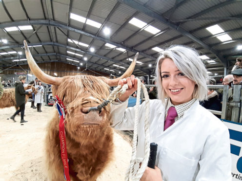 Sarah Noble from Tordarroch, Farr, Inverness with the Oban Highland cattle champion, Heather 12th of Tordarroch