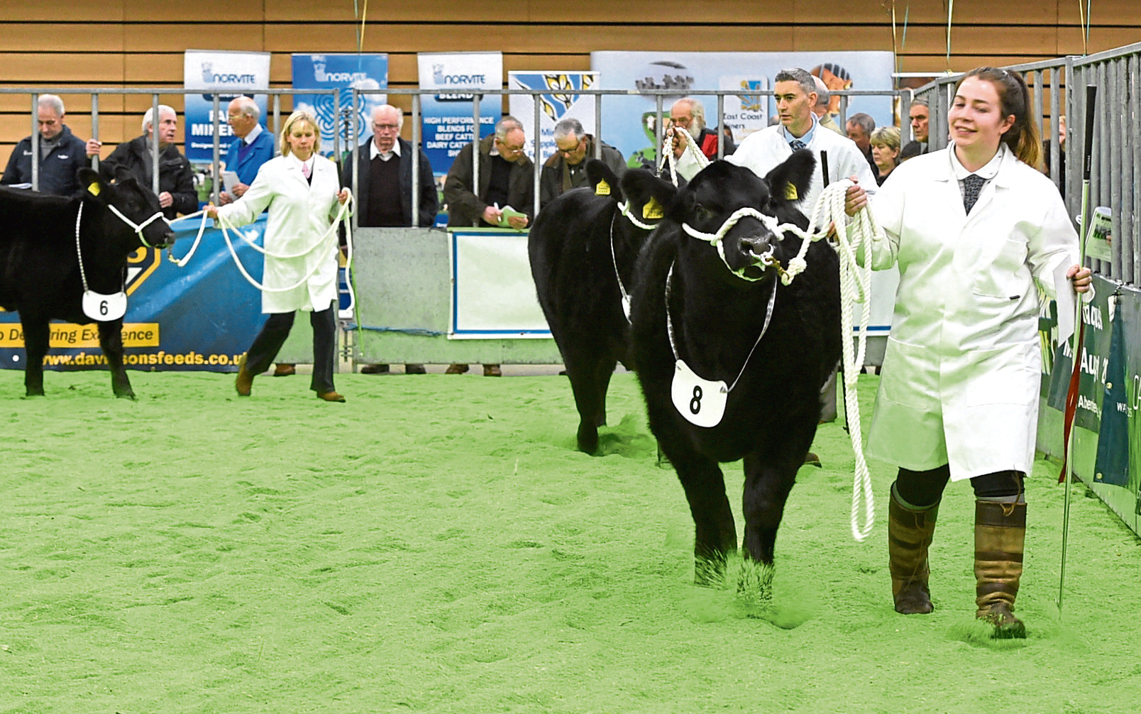 Entries are sought for this year's show.