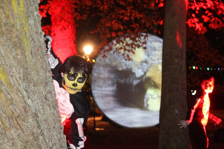 The Ness Islands Halloween Show