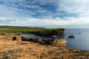 The coastline at Yesnaby, Mainland, Orkney. Pic: Visit Scotland.