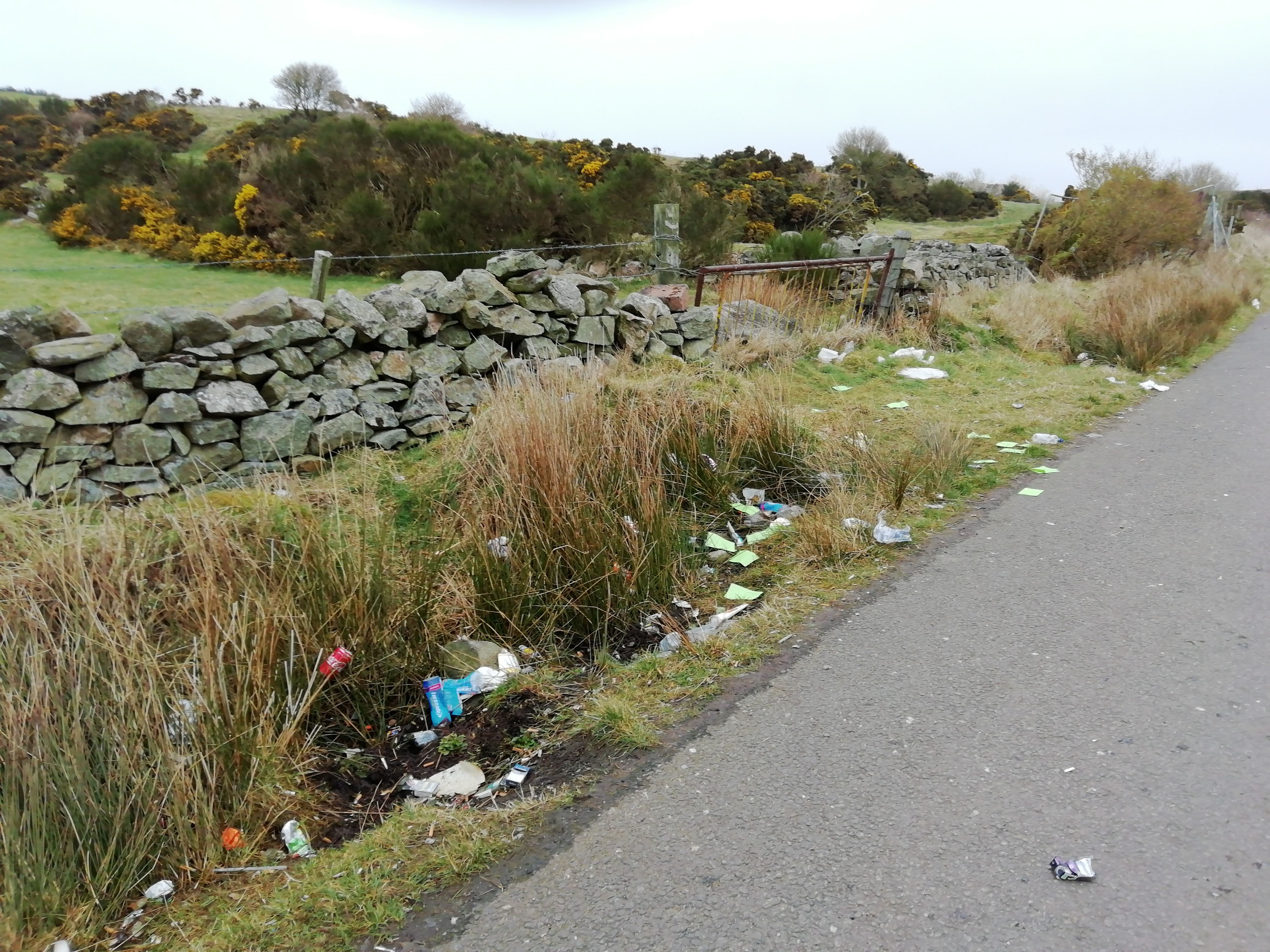 Residents have complained that litter is being left near Lochside Academy.