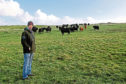 Jamie Leslie from Scholland Farm, Shetland.