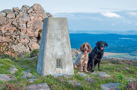 Gerry (black labrador) and Bob at the top of Craiglich.