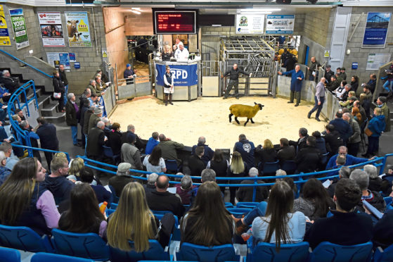 New guidelines are in place for those visiting auction marts.
