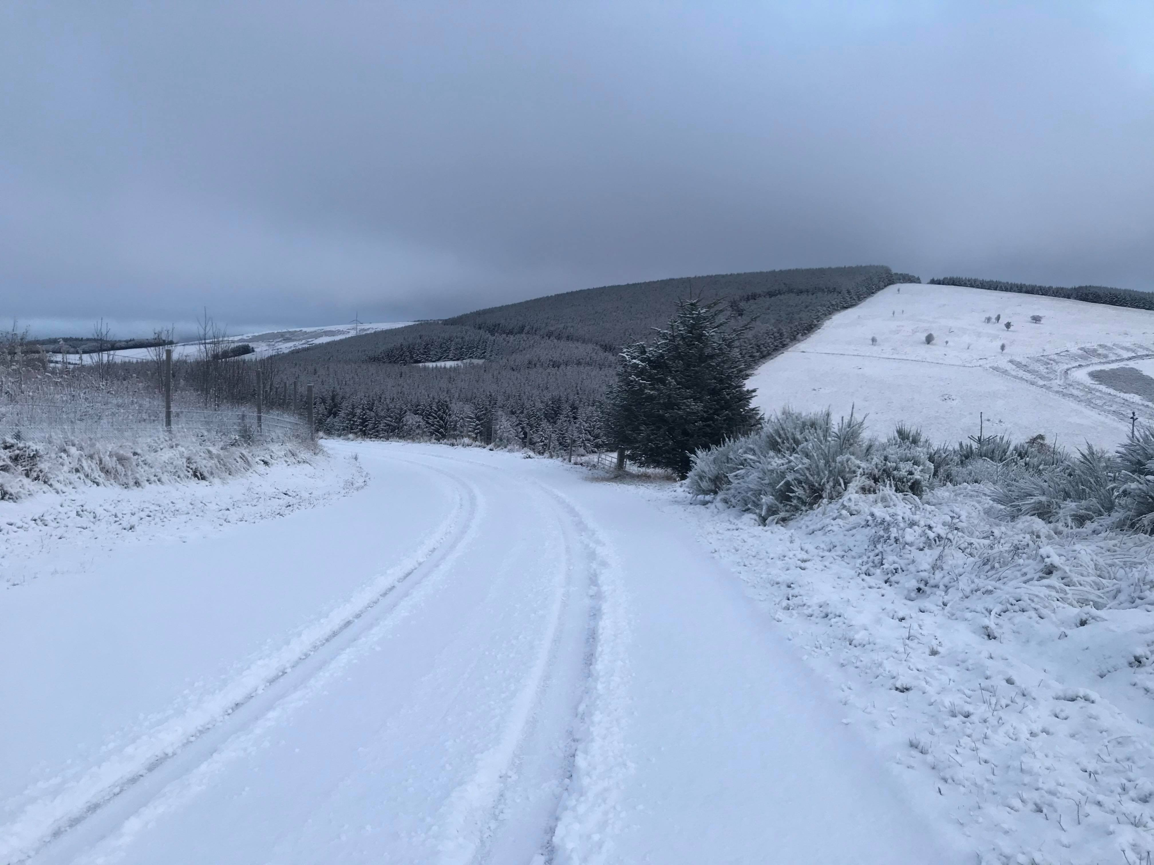 The wintry scene at Cushnie, near Alford, Aberdeenshire, this morning. Picture by Julia Sidell