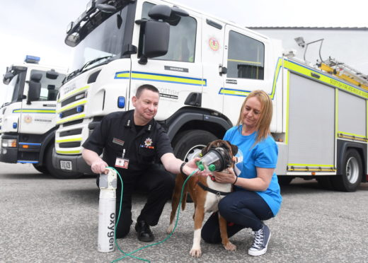 Angel tries out the mask, whilst Willie Chisholm the station manager at Inverurie and Audrey Noble, Angel's owner and a Trustee with the Boxer Welfare look on.  Picture by Chris Sumner