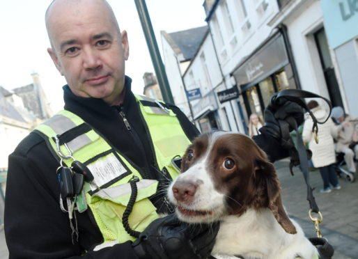 Tobacco sniffer dog Dixie with her handler Bobby Crainey. Picture by Sandy McCook