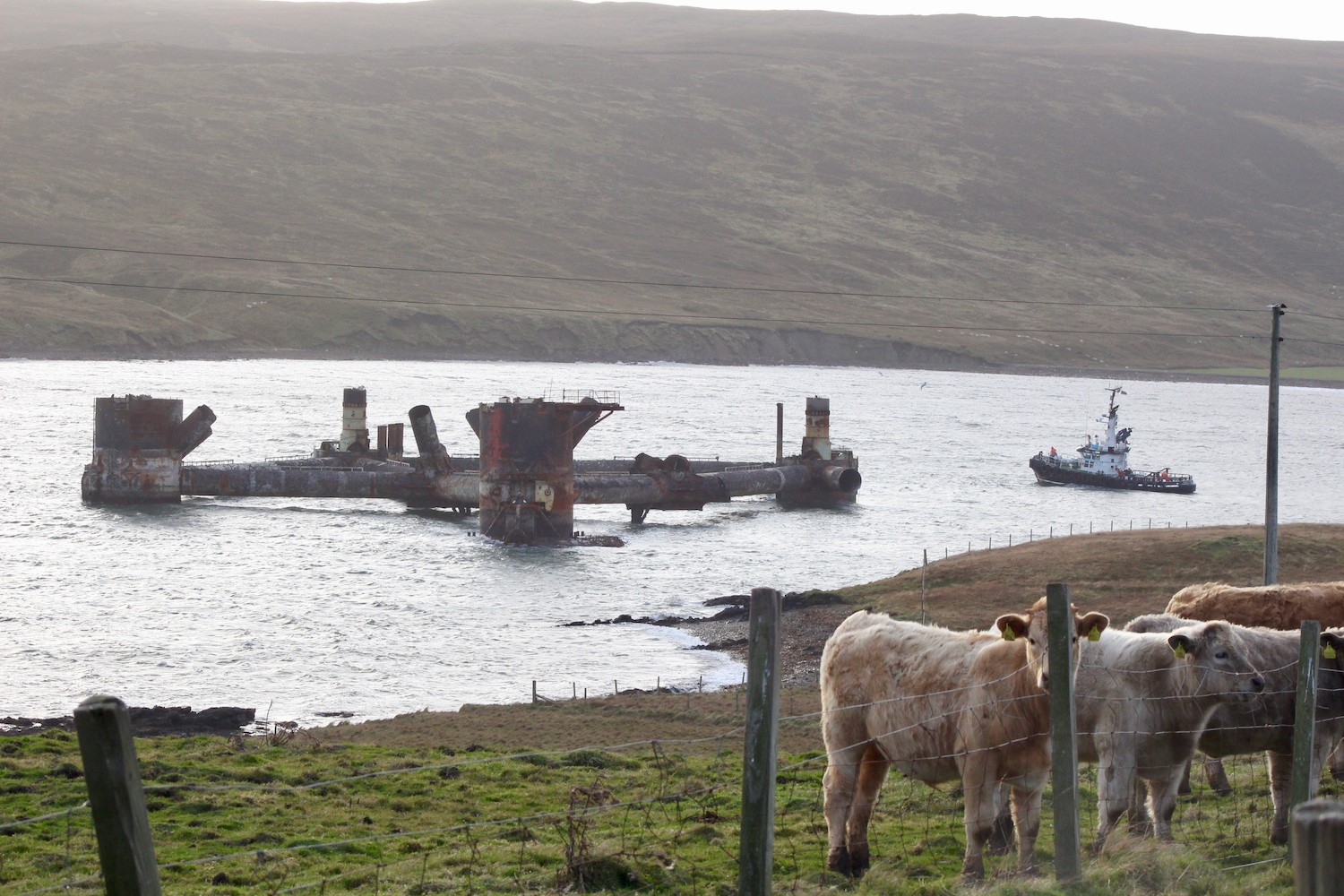 The Buchan Alpha oil platform which is being dismantled at Dales Voe in Lerwick broke free from the pier overnight in windy weather.