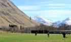 Fort William FC's Claggan Park.