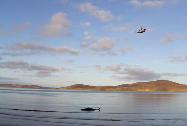 The beached whale off Luskentyre Beach.