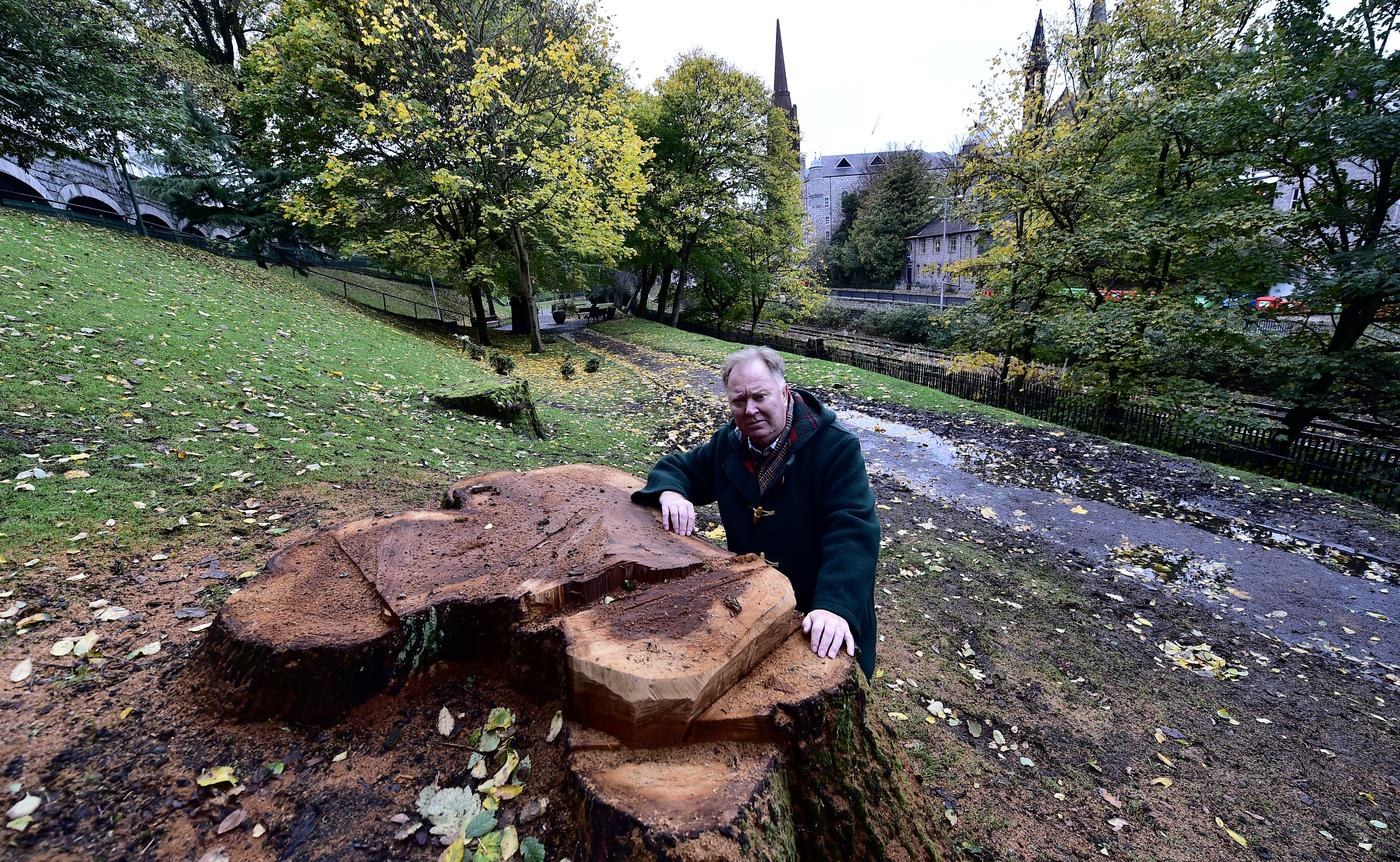 Councillor Bill Cormie with a UTG tree. Picture by Kami Thomson