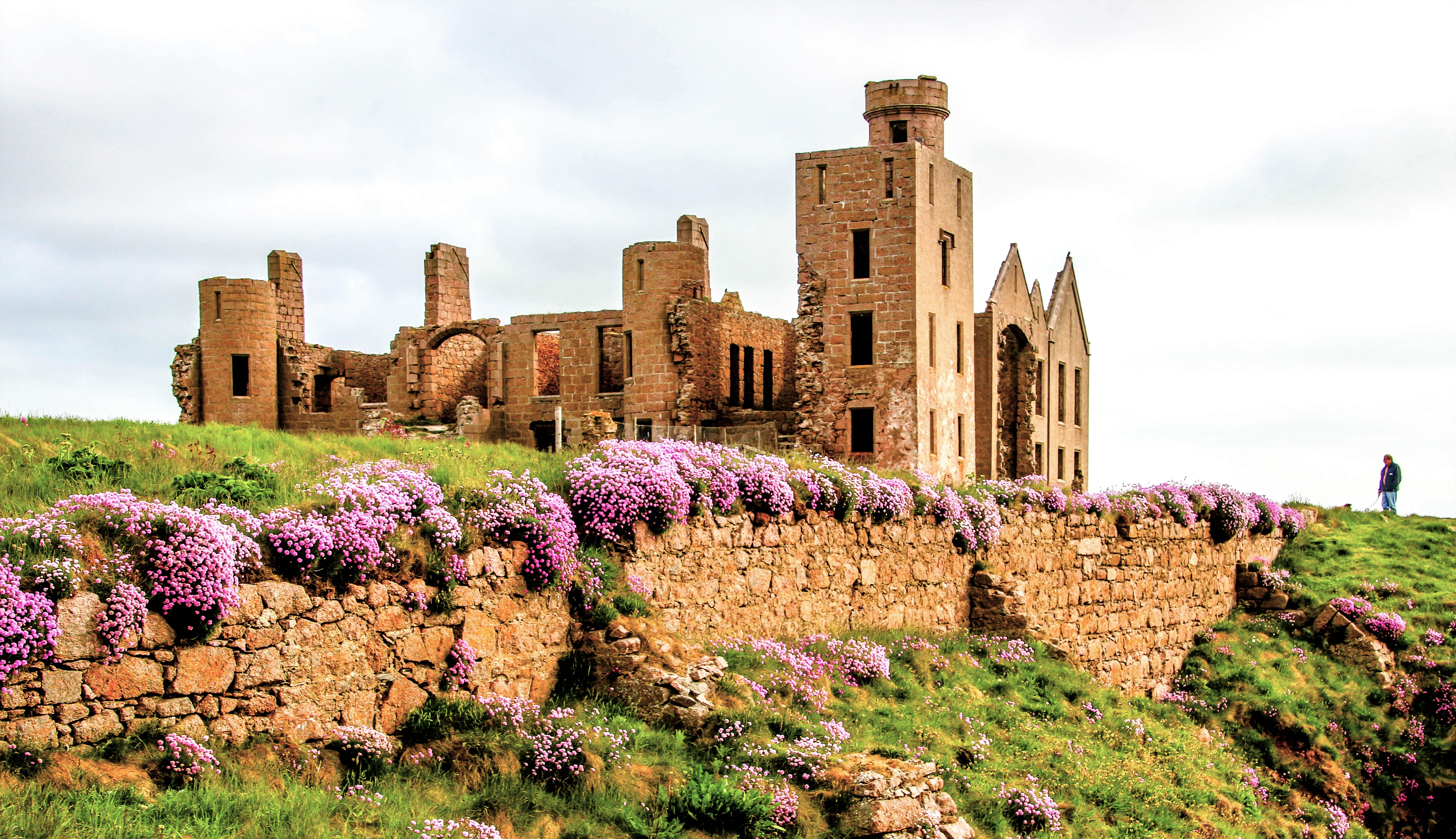 Slains Castle. Photo by Mike Sheperd