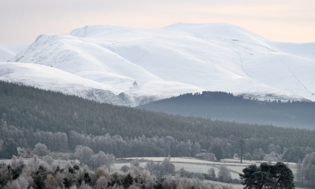 Cairngorm and the Cairngorm ski area in the distance over the Abernethy Forest.