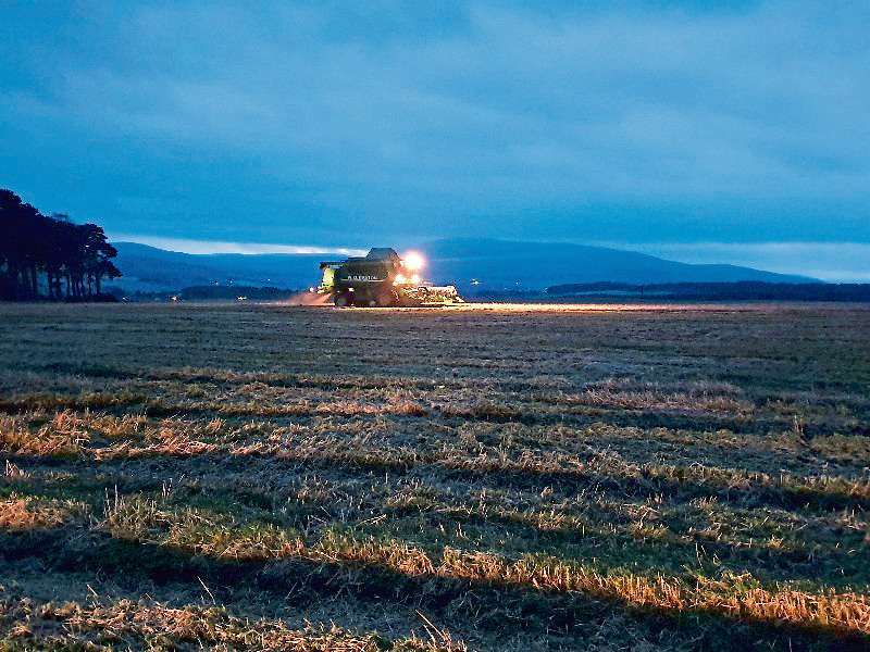 The Beatons were harvesting spring barley on December 29.
