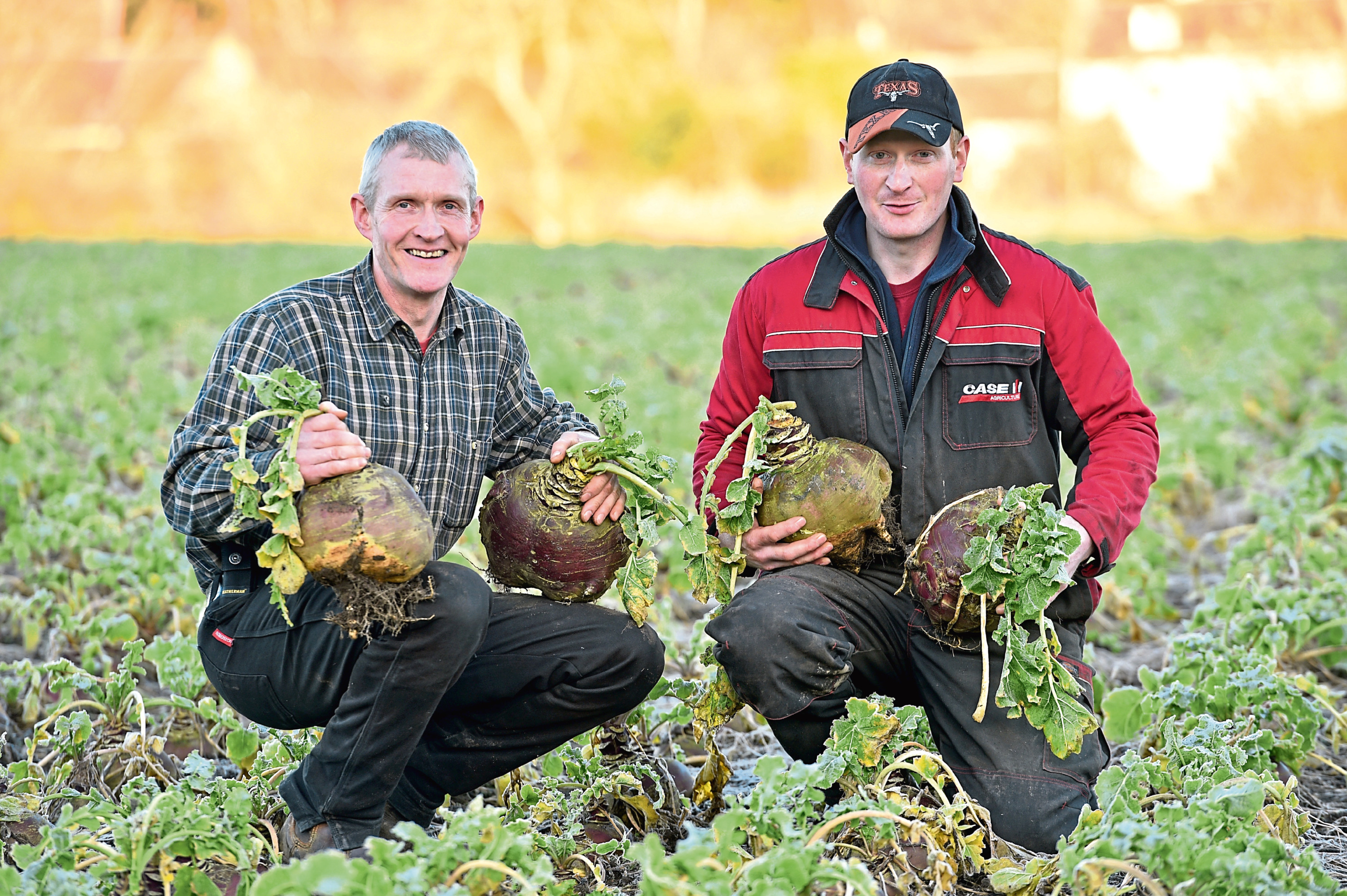 Rodney Blackhall, left, and his nephew Euan Blackhall with their champion turnips at Balbridie Farm, Crathes.