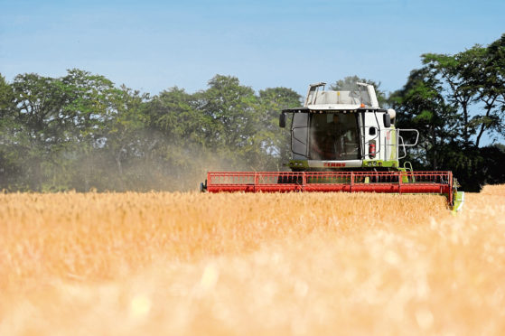 Scientists warn the loss of AMOC could decimate the country's arable farming sector.