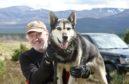 Alan Stewart with one of his Alaskan Huskies. Picture by Sandy McCook.