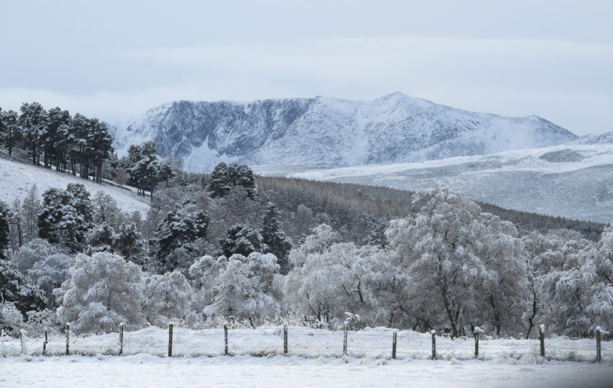 A snow covered Lochnagar seen from near Ballater, Aberdeenshire. Picture by Julia Sidell.